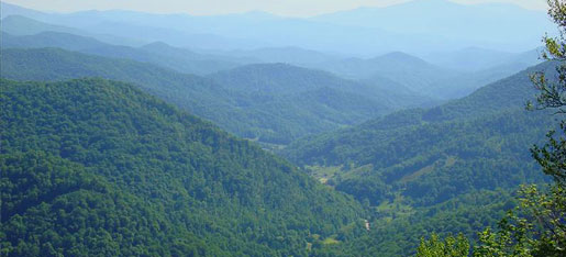 houses for sale in mars hill nc